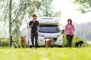 Dethleffs introduceert speciaal pakket voor honden en katten