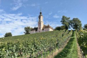 Camperplaatsen bij Duitse wijnboeren