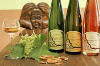 Wijnen van Pierre Koch
